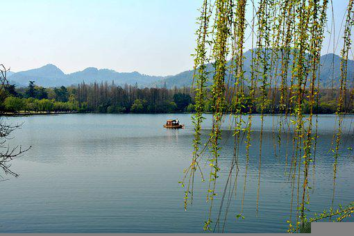 Lake, Weeping Willow, Boat, Mountains, Forest, Trees