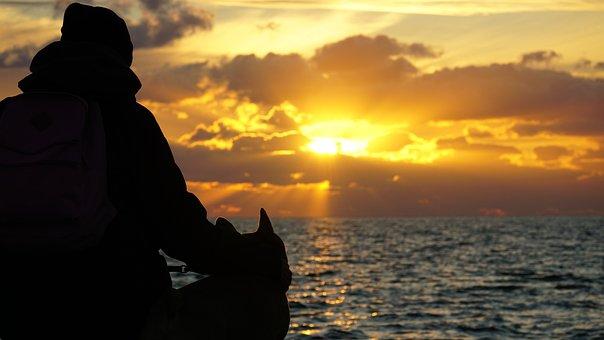Silhouette, Man, Sunset, Dog, Sea, Ocean, Water