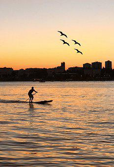 Sunset, Silhouette, Standup Paddleboarding