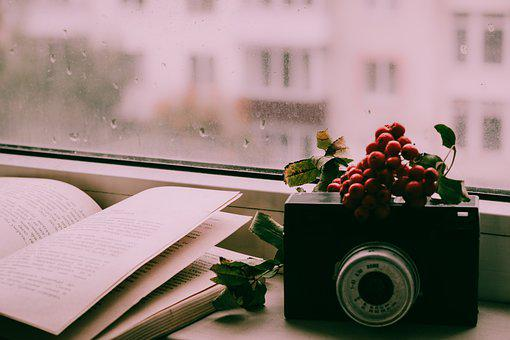 Book, Camera, Window, Rain
