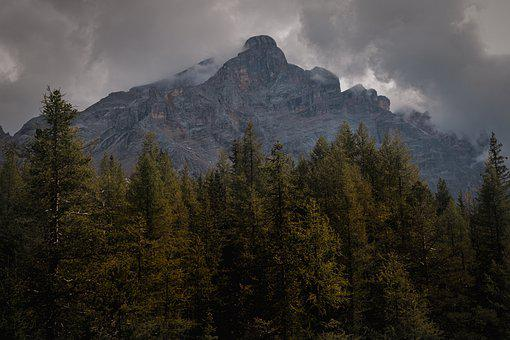 Dolomites, Mountains, Trees, Forest, Conifers