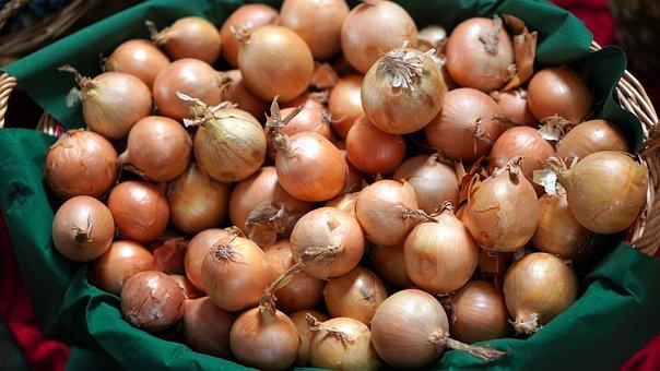 Onions, Harvest, Basket, Food, Fresh, Healthy