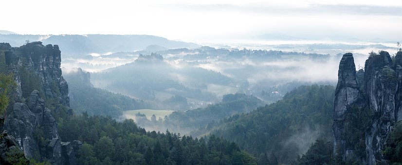 Panorama, Fog, Mountains, Forest, Trees, Coniferous