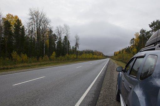 Road, Highway, Car, Road Trip, Road Shoulder, Trees