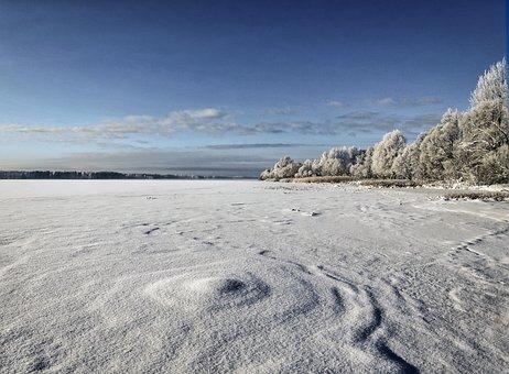 Winter, Frozen, Frost, Hoarfrost, Winterscape, Wintry