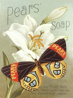Butterfly, Flower, Petals, Buds, Pear's Soap, Poster