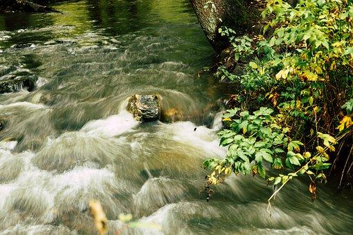 River, Stream, Rapids, Brook, Cascading, Torrent