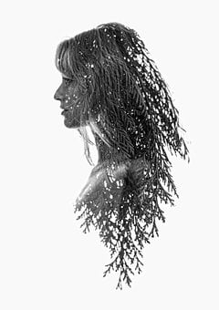 Woman, Face, Model, Trees, Hair, Person, Young, Eye