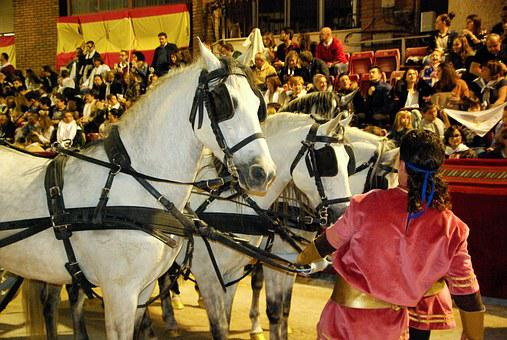 Lorca, Andalusian Horses, Hitch, Parade