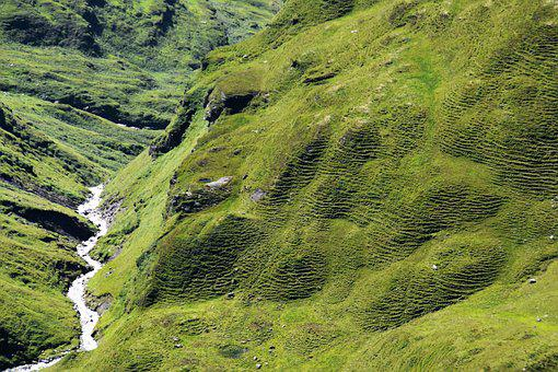 Mountains, Hill, Bach, Green, Nature, Landscape