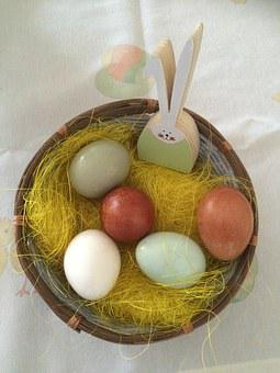 Easter Nest, Eggs In Natural Colors, Rabbit