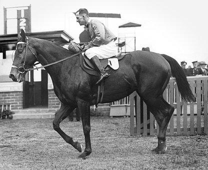 Harold, Jones, Jockey, Trainer, Frank, Mcgrath, Horse