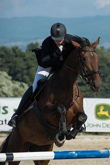 Parkúr, Jumping, Horse, Jockey, Race, Brown, Skokskákať