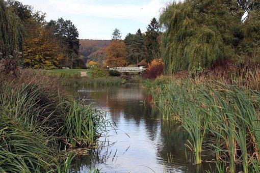 Park, Kurpark, Lake, Water, Pond, Bridge, Malerwinkel