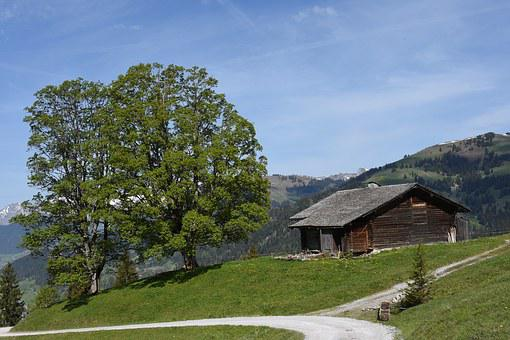 Alp, Hiking, Mountains, Landscape, Gstaad