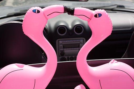 Flamingo, Beaks, Inflatable, Pink, Romantic, Lovers
