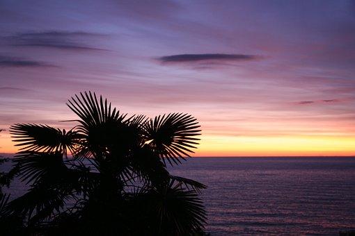 City, Sochi, Winter, Resort, Sunset, Evening