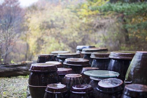 Jar, Autumn, Storage, Autumn Leaves, Rural Landscape