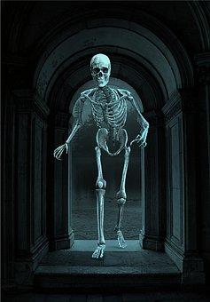Skeleton, Skull, Undead, Archs, Arcade, Death, Bones