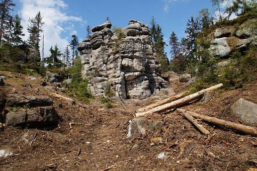 Rocks, Bark, Logs, Trees, Forest, Sandstone, Tourism