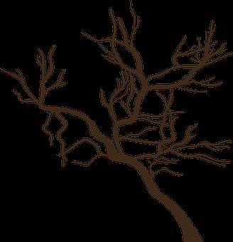 Tree, Dead, Branches, Dead Tree, Dead Branches, Icon