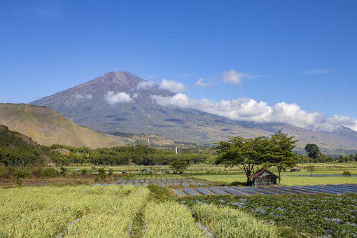 Field, Volcano, Countryside, Scenery, Nature, Farm