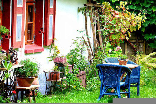 House, Garden, Plants, Pots, Gardening, Grass