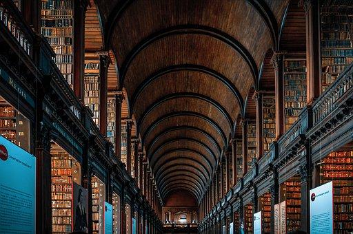Library, Books, Bookshelves, Bookcases, Interior