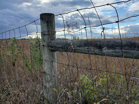 Fence, Fields, Meadow, Fence Post, Barbed Wire, Prairie