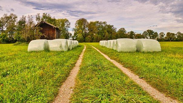 Nature, Field, Trail, Path, Way, Hay Bales, Pasture