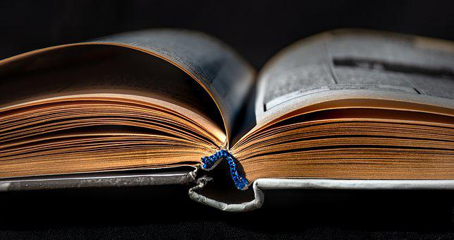 Book, Literature, Library, Knowledge, Paper, Print