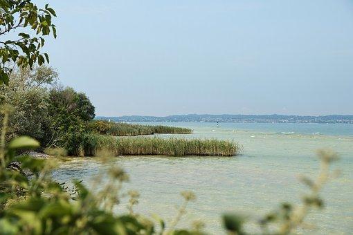 Lake, Coast, Bank, Water, Nature