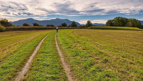 Nature, Meadow, Trail, Path, Way, Pasture, Field, Farm
