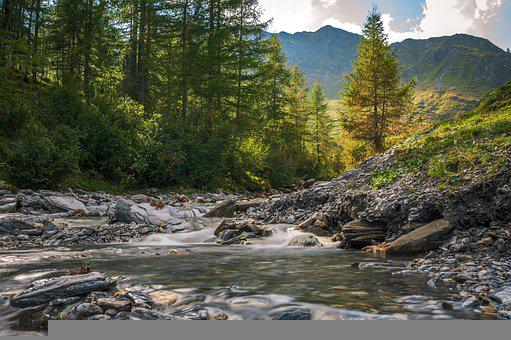 River, Stream, Creek, Rocks, Trees, Forest, Mountains