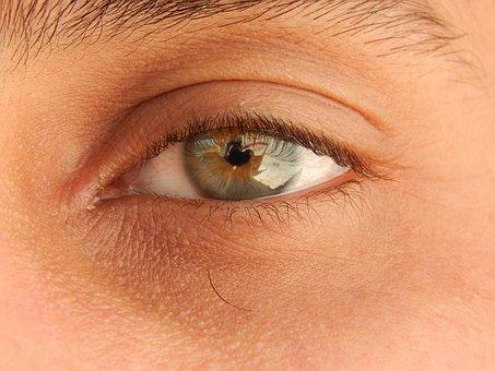 Eye, Green Eye, Eyelashes, Tantalizing Eye