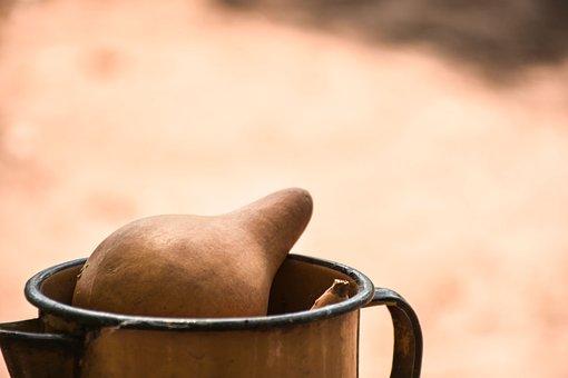 Porongo, Jar, Kettle, Fruit, Pumpkin, Traditional, Dry