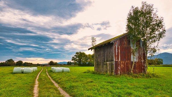 Nature, Meadow, Trail, Path, Way, Landscape, Building