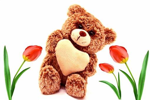Bear, Teddy Bear, Plush, Cute, Stuffed Animal