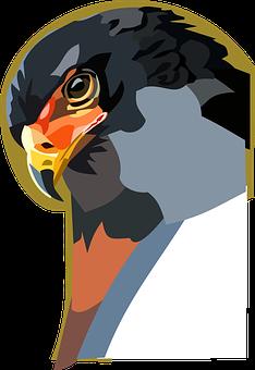 Raptor, Animal, Bird, Digital Painting, Painting, Icon