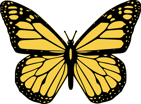 Butterfly, Icon, Winged, Butterfly Icon
