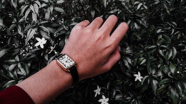 Watch, Clock, Flowers, Hands, Tan, Woman, Girl, Arm