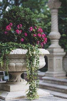 Flowers, Leaves, Garden, Column, Vase, Pot, Floral