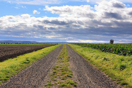 Field Mark, Field, Rural, Road, Gravel Road, Roadway