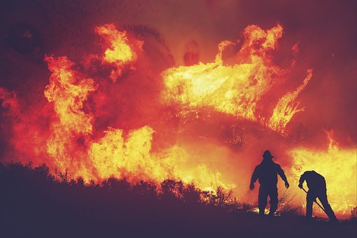 Fire, Flames, Trees, Forest, Destruction, People