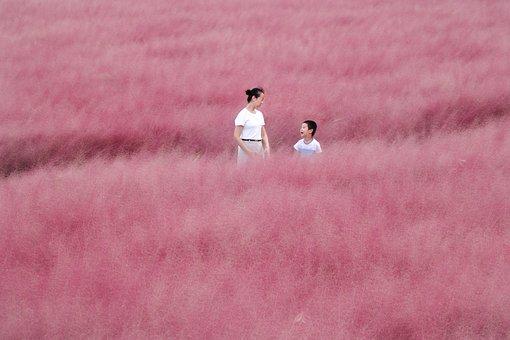 Mother, Son, Field, Grass, Love, Nature, Pink, Dream