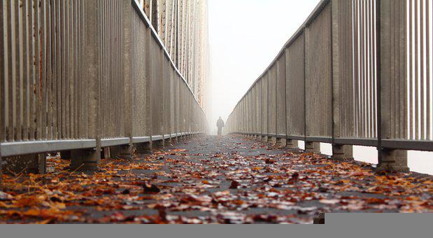 Bridge, Fallen Leaves, Autumn, Person, Man, Walk
