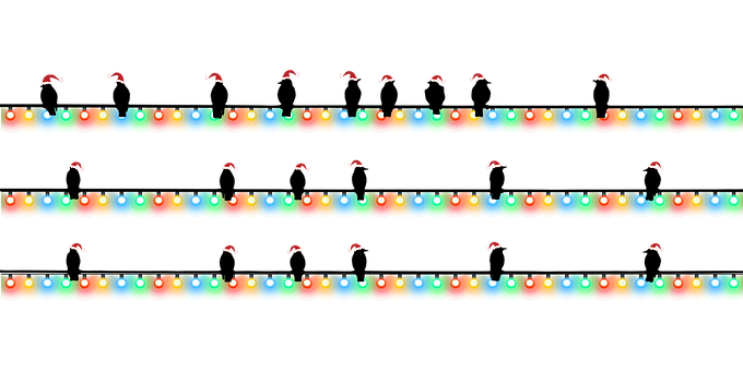 Christmas, Birds, Lights, Christmas Lights, Blackbirds