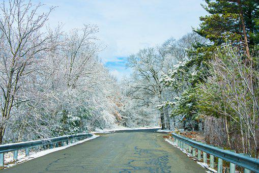 Snow, Trees, Road, Forest, Woods, Woodlands