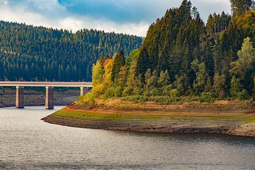 Oker Dam, Reservoir, Okertalsperre, Trees, Conifers