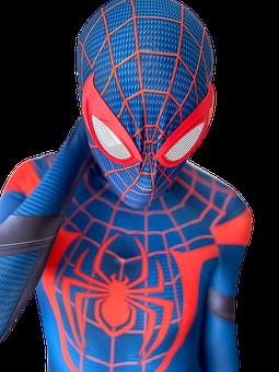 Spider-man, Costume, Cosplay, Superhero, Bodysuit